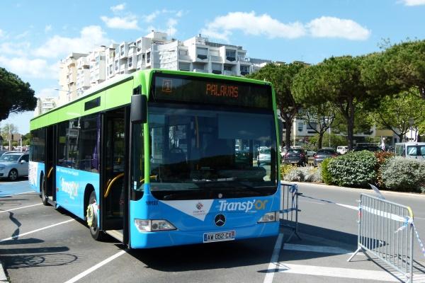 Bus Carnon Tram